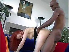 Redhead ( Audrey Hollander) Vs Black Cock (Biggz)