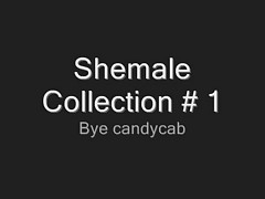 Shemale Collection # 1