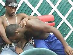 Gay sex party in da hood