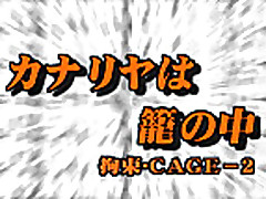 D Cage- 2