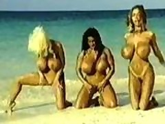 Big Titty Heaven Is On The Beach