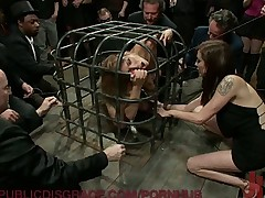 The Caged Slave