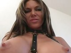 Ana Nova tit for Tat