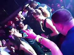 Wild Nightclub